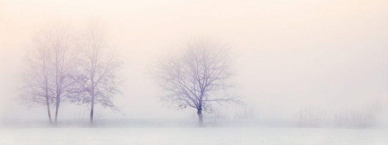 winter-landscape-sm